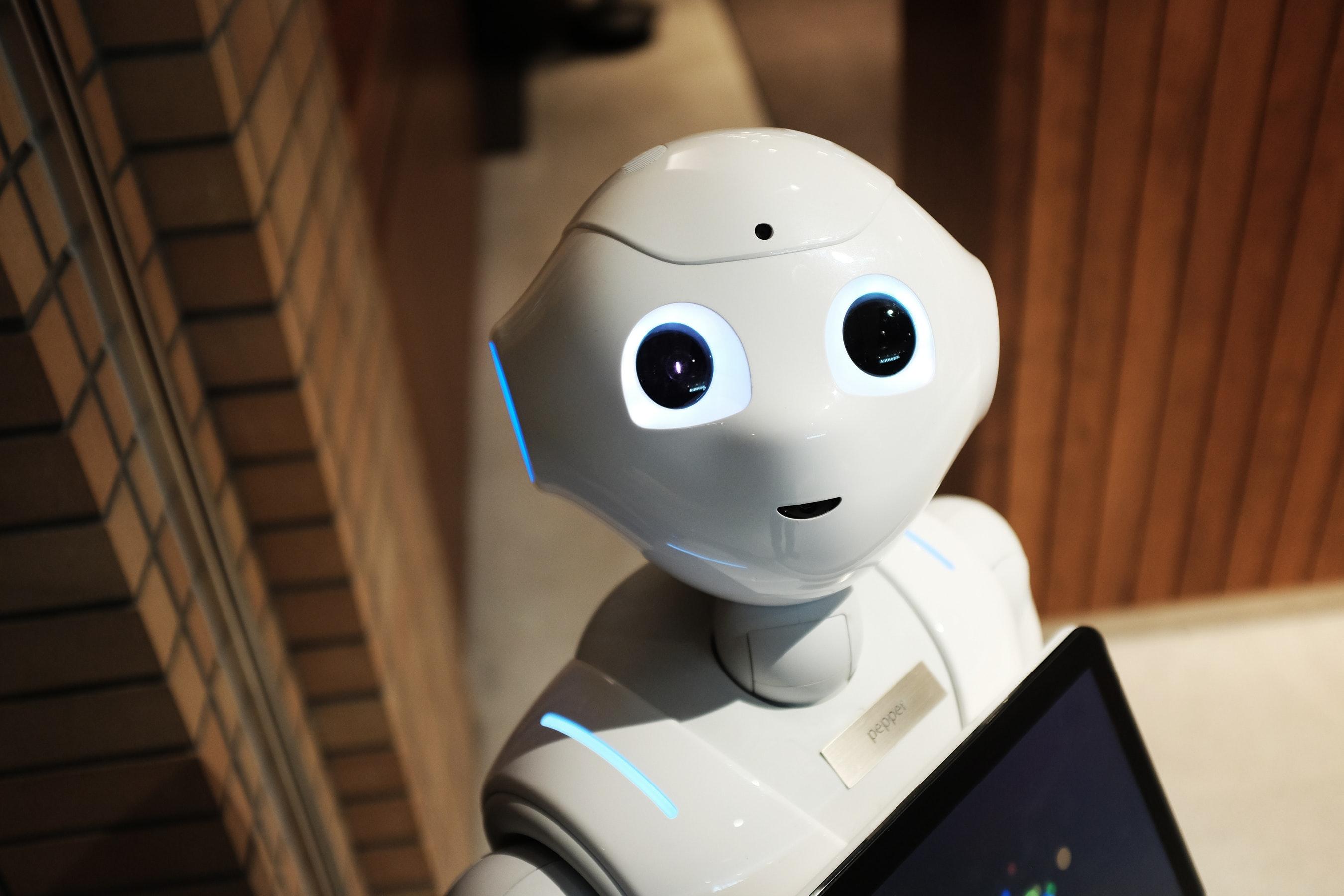 母湯喔!機器人會跟你搶飯碗?趕快報名Python課程跟它拚了
