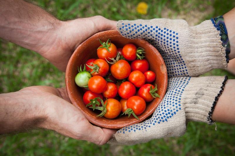 番茄鐘是什麼(下)用Python量身打造私人番茄鐘